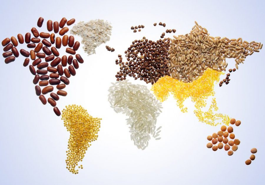 World map with various grains